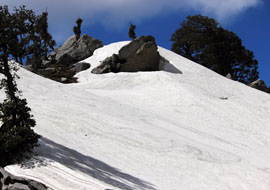 Trek to Triund and Snowline